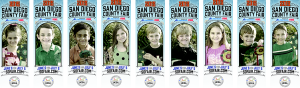 San Diego County Fair Banners 2015
