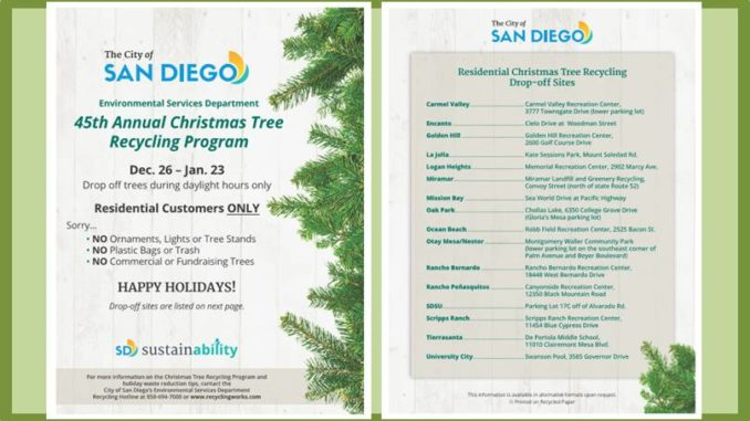 Each year, the City of San Diego Environmental Services Department hosts  its Annual Christmas Tree Recycling ... - Christmas Tree Recycling At Swanson Pool On Governor Drive In